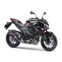 Z800/Special Edition 2016