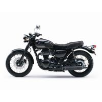 W800 Special Edition 2015