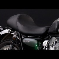 Kawasaki W800 Single Seat